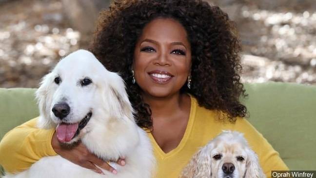 Oprah dating LifeClass Hotels